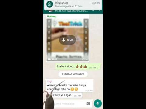 Whatsapp Funny Rat in Chat