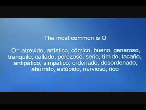 Spanish lesson: ¿Cómo eres? & Personality descriptions (Part 2)
