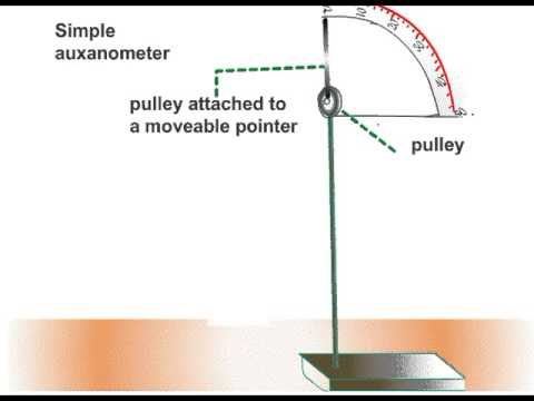 Using a Auxanometer to Measure Growth Rate of a Shoot