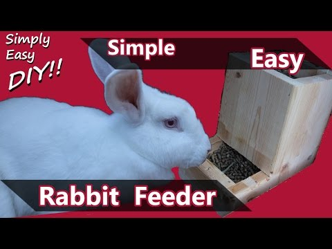 DIY Rabbit Feeder