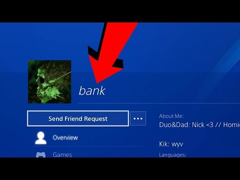 Looking at OG PS4 PROFILES #1