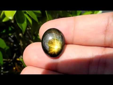 16.70 ct. Golden star sapphire 12 rays *23101