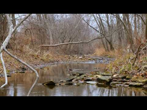 75 +/- Acre Weekend Get-Away in Lincoln County, MO