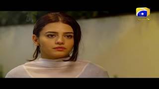 Qaid - Best Scene 33   HAR PAL GEO
