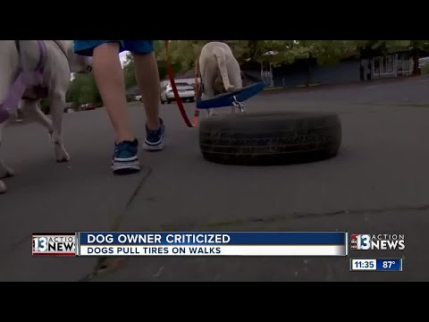 Dog owner criticized for how he walks dogs