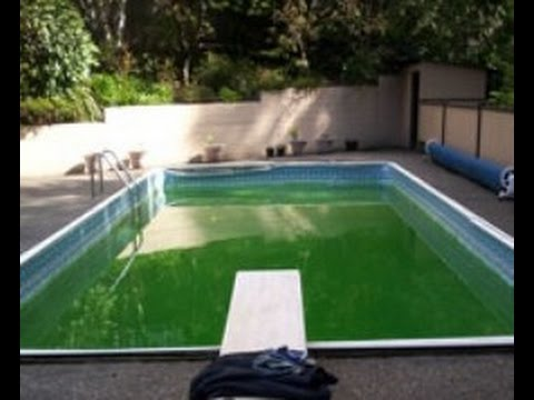 No Chlorine In Pool After Adding Clorine