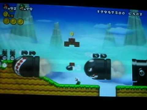 New Super Mario Bros. Wii Custom Level