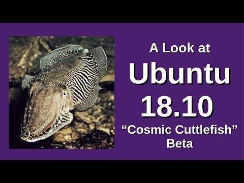 A Look at Ubuntu 18.10