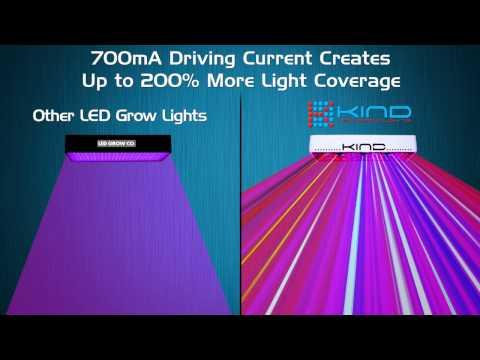 Best LED Grow Light | LED Grow Light Reviews | Kind Led Grow Lights