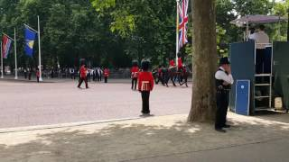 When a soldier collapsed at the Trooping the Colour 2017