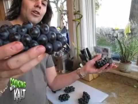Giant Concord Grapes & Grape Jelly Preserves COOKING with Kalt -  LEE KALT - House Music TV