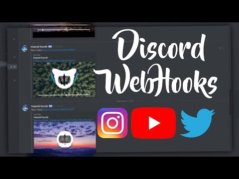 How to Setup Automatic Social Media Feeds on Discord!