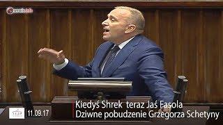 Kiedyś Shrek teraz Jaś Fasola. Dziwne pobudzenie Grzegorza Schetyny