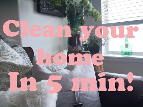 Easy How to Clean your home in 5 Minutes! So Fresh and So Clean!