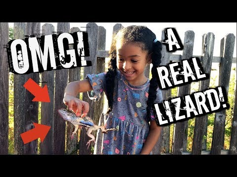 SHE CAUGHT A REAL LIZARD!!!!!