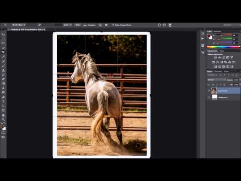 Photoshop Playbook: Adding Borders to Images