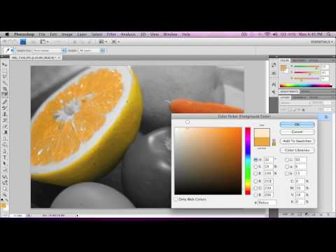 Photoshop tutorial: Add color to a black & white photo.