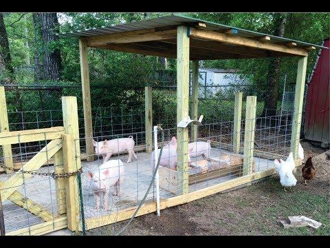 How to build a pig pen design - Organic Hogs