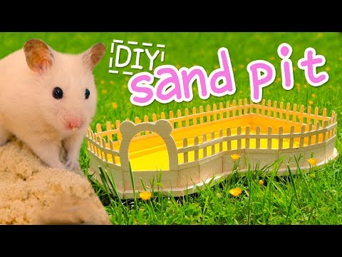 🐾 Sand Pit | HAMSTER DIY 🐾