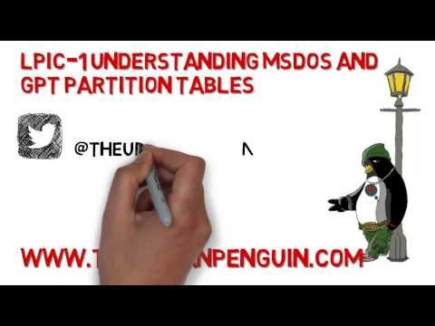 LPI 102 1 MSDOS and GPT Partition Tables