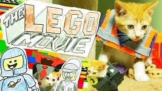 The LEGO Movie (Cute Kitten Version)