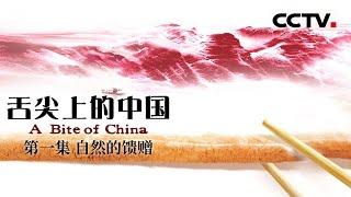 《舌尖上的中国》第一季 第一集 自然的馈赠 | CCTV纪录