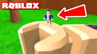 THE SMALLEST PLAYER IN ROBLOX