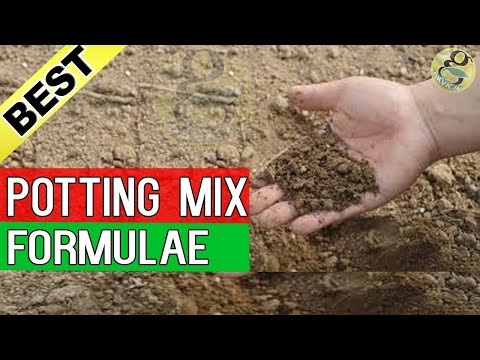 Potting Mix - Best Soil for Plants - Gardening | Best Seed starting mix for Seed Germination