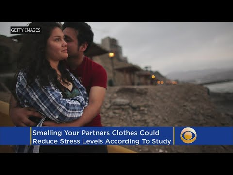 Smelling Your Partner's Clothes Can Decrease Stress Level, Study Says