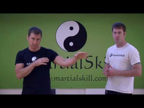 7 Star Mantis Kung Fu: Basic Kung Fu Punching Techniques