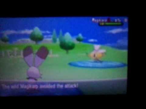 Pokemon X and Y: Shiny Magikarp [Chain Fish 30]
