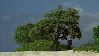 Lost Jack Sees A Mysterious Man At The Trees (1x04 Walkabout)