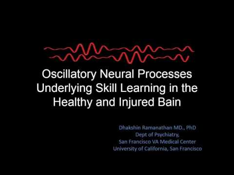 Oscillatory Neural Processes Underlying Skill Learning in the Healthy and Injured Brain