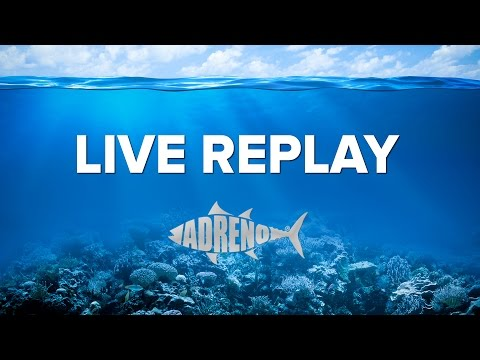 LIVE REPLAY | ADRENO Coral Sea Spearfishing Trip July 2016