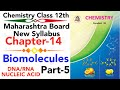 Imp Part-5 Ch-14 Biomolecules Class 12 Science Chemistry Hsc Board | Dna Rna And Nucleic Acid