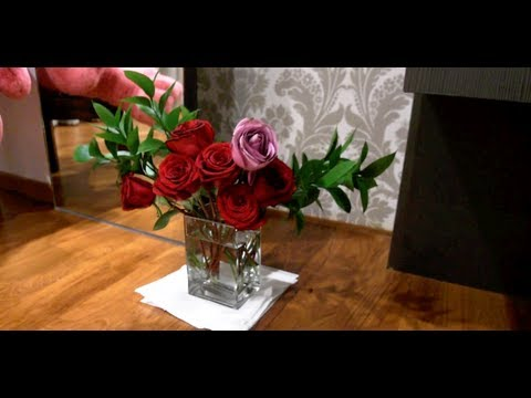 How to keep fresh cut roses alive longer!