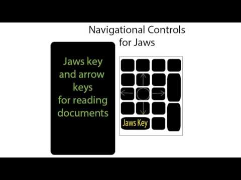 JAWS basics for Disability Support Staff