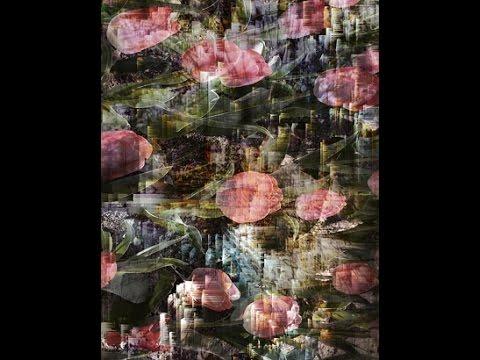 Art, Technology, Ecology: A Talk by Artist Frank Gillette