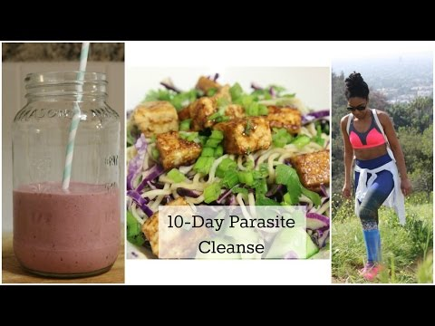 Parasite Detox and What I Ate | The Divine Hostess