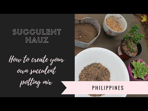 How to create your own Succulent potting mix (Philippines)