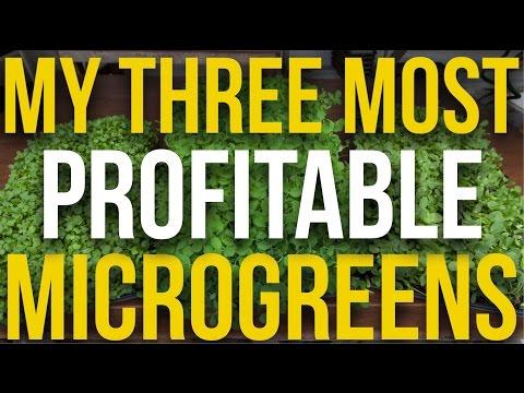 My 3 Most Profitable Microgreens