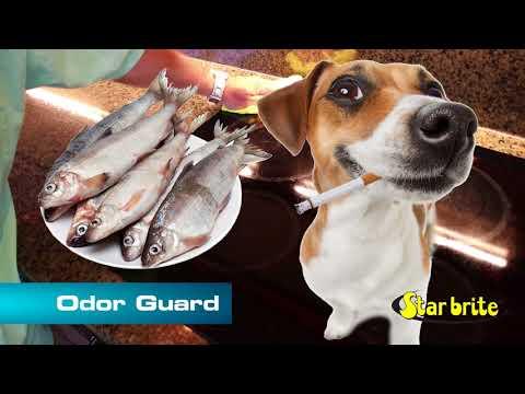 Star brite Odor Guard Surface Cleaner- Fabric Deodorize - Air Freshener - 95322