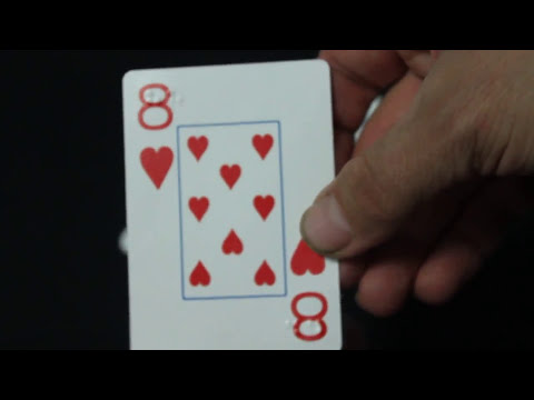 Bicycle Braille Deck Review