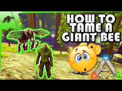 How To Tame A Giant Bee(EASY!)- Ark Survival Evolved Xbox One- Kamz25