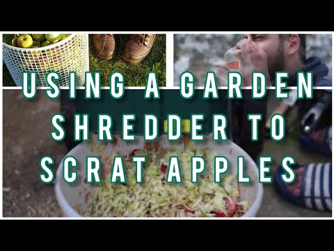First time using apple press and scratting with a garden shredder to make hard apple cider