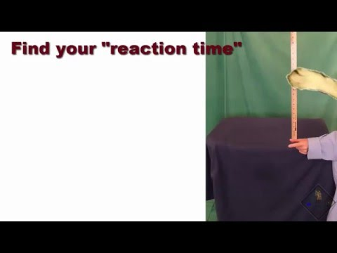 how to calculate your reaction time a science with bobert video short