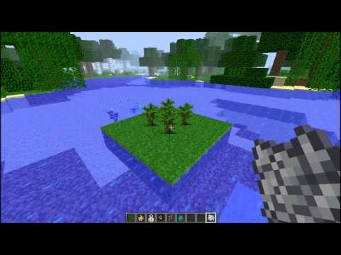 Minecraft Update 12W04A ( 1.2 ) - Ocelots Kittens, Charge Ball, Bottle o' Enchanting, How To & More