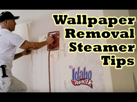 Wallpaper & Paper Border Removal With A Wall Paper Steamer