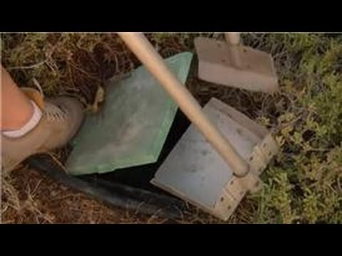 Home Landscaping Tips : How to Compost Dog Waste