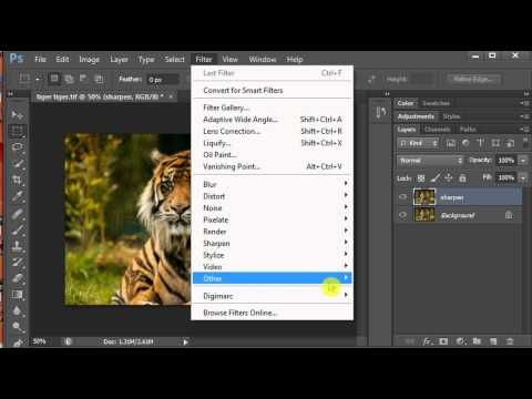 How To Sharpen An Image In Elements 10 And Cs6